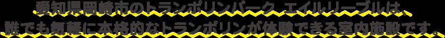 愛知県岡崎市のトランポリンパーク エイルリーブルは、誰でも気軽に本格的なトランポリンが体験できる室内施設です。
